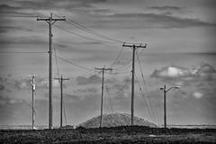 Poles and Wires (gmolzahn) Tags: digitaldarkroom 70210beercan sonya77 silverefexpro2