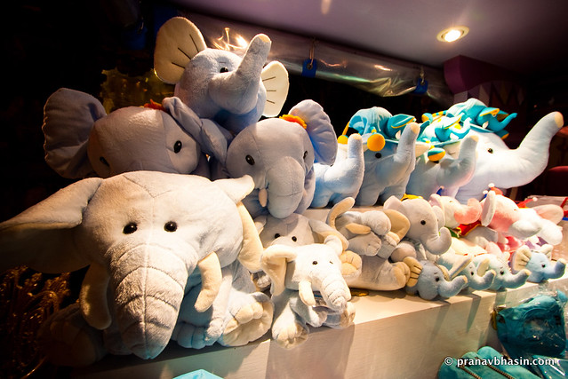 Congregation Of Elephants, At Phuket Fantasea, Thailand