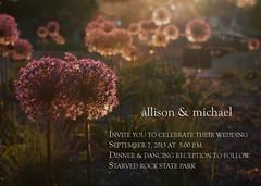 We Do (michael.veltman) Tags: park flowers wedding sunlight love rock allison michael do state we invitation starved