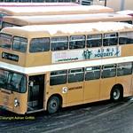 Northern 3549
