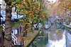 ~ Colorful Autumn ~ (~Stichter~) Tags: bridge autumn netherlands reflections canal utrecht oudegracht vpu1 rememberthatmomentlevel4 rememberthatmomentlevel1 rememberthatmomentlevel2 rememberthatmomentlevel3 rememberthatmomentlevel7 rememberthatmomentlevel9 rememberthatmomentlevel5 rememberthatmomentlevel6 rememberthatmomentlevel8 rememberthatmomentlevel10 vigilantphotographersunite vpu2 vpu3 vpu4 vpu5 vpu6 vpu7 vpu8 vpu9 vpu10
