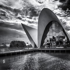 Submarine restaurant ({heruman}) Tags: city espaa white black blanco valencia monochrome square aquarium mono restaurant spain negro arts ciudad submarine artes sciences acuario 1x1 ciutat ciencias submarino cuadrado cincies oceanogrfic germanvidal