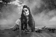 Día de Muertos (LukeOlsen) Tags: usa water fog vancouver dayofthedead washington wa pw díademuertos strobist lukeolsen pdxstrobist wl1600