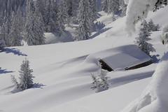 Winter in Tirol - winter wonderland (visittirol) Tags: winter snow mountains tirol htte powder hut tyrol mountainhut winterwonderland winterlandscape tiefschnee winterlandschaft tyrolean bergwinter stantonamarlberg alpinewinter winterinthemountains winterintirol winterindenbergen