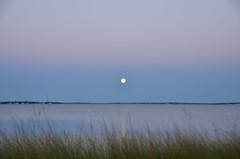 131018-3112 (VividVisionsPix) Tags: autumn moonshot lightpainters nassaupointbeach