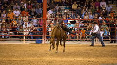 20131108 5DIII Davie Pro Rodeo44 (James Scott S) Tags: girls horses sport cowboys speed canon scott photography eos james is high florida action mark no flash barrel fast 8 competition s bull racing bulls riding ii rodeo hi fl cowgirls davie broncos 70200 eight f28 ef seconds weekley 5diii