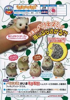 珍奇動物「刺蝟」療癒轉蛋推薦!