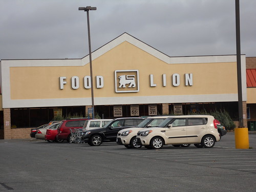 FOOD LION SALISBURY, MD