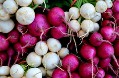 Radishes (explored) (pjpink) Tags: park fall virginia october farmersmarket market richmond southside veggies rva foresthillpark soj 2013 pjpink southofthejamesmarket
