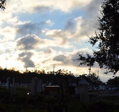 Holt- sun breaks through