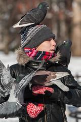 Pigeon Whisperer (dansshots) Tags: nyc newyorkcity snow newyork manhattan pigeon washingtonsquarepark pigeons d3 snowinnewyork snowinnyc nikond3 nycpigeons dansshots