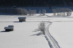 ein Wintermorgen in Pfitsch (mikiitaly) Tags: schnee italy snow spur day sdtirol altoadige stadel autofocus pfitschtal pfitsch photographyforrecreationeliteclub