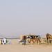 desert of Makkah