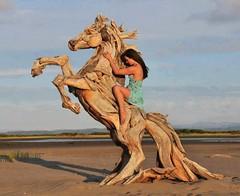 Ao del Caballo de Madera (MysteryPlanet.com.ar) Tags: caballo madera chino horoscopo
