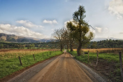 Hyatt Road (Jim Liestman) Tags: road mountains cove tennessee cadescove gsmnp hyattroad