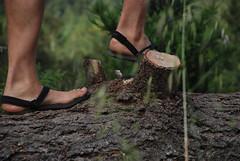 ShammaSandalsWilderRanch (Shamma Sandals) Tags: california ranch feet leather sandals barefoot flipflops wilder ucsc shamma barefootsandals barefootrunning barefootrunningshoes shammasandals barefootrunningsandals