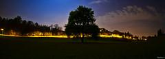 Castello di Valdengo by night (Rudy Ceria) Tags: panorama night landscape italia piemonte albero biella castello notte valdengo