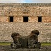 jaguar bicephal / Uxmal, Yucatan, Mexico / MAYA, palacio del gobernador