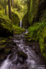 Lush Ruckel (Dan Sherman) Tags: green water oregon creek waterfall moss rocks unitedstates northwest pacificnorthwest ferns columbiagorge columbiarivergorge eaglecreek cascadelocks ruckelcreek mossygrotto