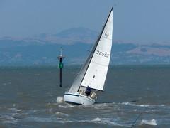 choppy channel (Riex) Tags: california sailboat bay mount sanfranciscobayarea sail diablo sfba voile leaning sanmateo voilier sloop californie baie schneiderkreuznach gîte variogon z990 kodakeasysharemax gîter