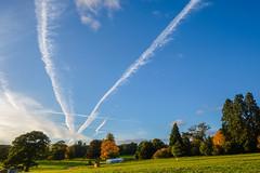 DSCF0256 (Emrys Schoemaker) Tags: autumn cotswolds gloucestershire westonbirt