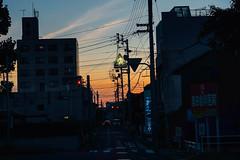 (Tridentz | ) Tags: street japan shikoku marukame sunset city daily   dust summer  travel sony a7 alpha alpha7 gm gm85 fe fe85 f14 g master