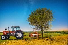 Yonca Tarlasi (Seko91) Tags: sony a6000 samyang 12mm f20 milkyway milchstrase samanyolu kleefeld sakizky lleburgaz korusu tree dawn astrophotography stars turkey longexposure