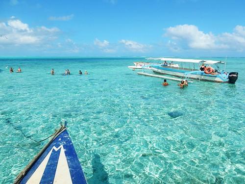 Ray & Shark cleansing spot in Bora Bora - French Polynesia