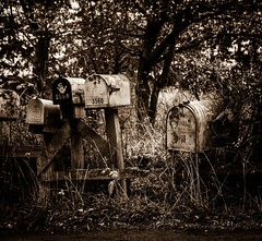 Dans L'Attente De Tes Nouvelles (Katrina Wright) Tags: dsc3993 old nostalgia sepia monochrome bw mailboxes postboxes mail waiting overgrown weeds neglected abandoned rusty doors