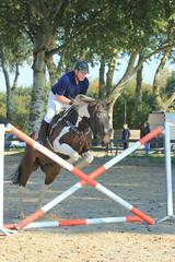 IMG_4893 (Bas & Emily) Tags: horse horses horsejumping jump jumping rijden paard paarden springen springwedstrijd sport belleepoque hindernis