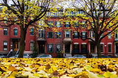 Boston Brick and Leaves ((Jessica)) Tags: lightroom upright hue red yellow fall autumn leaves lowperspective ground carpetofleaves brick brownstones buildings historic boston southend newengland unionpark massachusetts season seasonal seasons colorful vibrant outdoors sigma sigma19mm sigmalens sony alpha a6000 sonya6000 sonyalpha sonyalpha6000