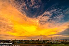 Phoenix (ech119) Tags:           taiwan kaohsiung electrictower energy farm rural sunset dusk clouds dramatic  outdoor    summer sun nature  typhoon  sky zeissdistagont2821ze zeiss21 zeiss   serene