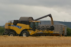 New Holland CX8070 Combine Harvester cutting Winter Barley (Shane Casey CK25) Tags: new holland cx8070 combine harvester cutting winter barley cx 8070 yellow cnh nh castletownroche newholland grain harvest grain2016 grain16 harvest2016 harvest16 corn2016 corn crop tillage crops cereal cereals golden straw dust chaff county cork ireland irish farm farmer farming agri agriculture contractor field ground soil earth work working horse power horsepower hp pull pulling cut knife blade blades machine machinery collect collecting mähdrescher cosechadora moissonneusebatteuse kombajny zbożowe kombajn maaidorser mietitrebbia nikon d7100