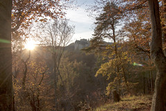 Burgruine Gsting (KarinKPhoto) Tags: graz autumn fall canon eos500d forest leaves tree sunset