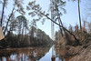 Dismal Swamp Canal continues 85-year revival (Rapid Prototyping China) Tags: 85year canal continues dismal revival swamp
