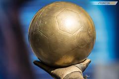 Expo Boca 2016 (Funesn360 | Nicols Funes) Tags: boca bocajuniors labombonera cabj xeneize laboca la12 azulyoro futbol pelota exposicion idolos celebridades diversion soccer leyendas historias history legends fun portero arquero estatua ball balon bronce oro