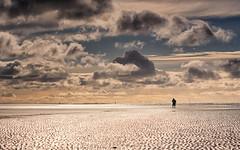 A walk in the wadden sea (Stefan Sellmer) Tags: sunshine autumn november d750 waddensea seascape water denmark northsea outdoor landscape mood fanoe clouds fanø dänemark dk sky