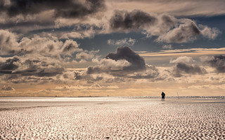 A walk in the wadden sea