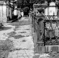 Everyday New Orleans 2016: The Cemeteries (marysmyth(NOLA13) ) Tags: lafayettecemeteryno1 fence wroughtiron flame ornate citiesofthedead cemetery gardendistrict neworleans hasselblad 503cxi film sqaure mediumformat kodaktrix400 blackwhite hff