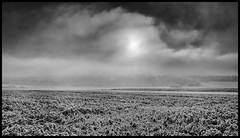 morning fog (Lukas_R.) Tags: leica q 28mm fog morning bw street oberpfalz