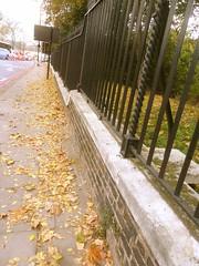 P1390255 (londonconstant) Tags: londonconstant costilondra london architecture chelsea westminster promenades streetscapes