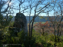 Menhir de Camboulan - lower platform. (AJ Mitchell) Tags: menhir megalith lot quercy obélisque python monolith valley limestone occitania oak scrub scrubland standingstones