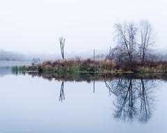 Blue Hills Reservoir (alohadave) Tags: bluehills bluehillsreservior fog massachusetts northamerica pentaxk5 places sky unitedstates smcpda1650mmf28edalifsdm
