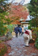 Autumn @ Kodai-ji (jpellgen) Tags: karsansui garden japan japanese nihon nippon kodaiji temple buddha buddhist buddhism nikon nikkor kyoto kinki kansai honshu spring zen rinzai higashiyama 高台寺 京都 日本 東山区 asia sigma 1770mm d7000 2016 woman girl kimono momiji leaves leaf koyo