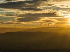 MARIAN SIMON PHOTOGRAPHY-15 (MARIAN SIMON PHOTOGRAPHY) Tags: landscape landschaft outdoor natur nature nebel fog olympusomdem1 omd em1 sonne sonnenuntergang sonnenstrahlen mzuiko75mmf18 olympus