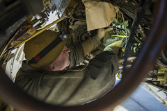Viper Maintainers Ensure Combat-Ready Aircraft (Robert_Cloys) Tags: bagramairfield 455thaew bagram afghanistan freedomssentinel hillairforcebase f16 fightingfalcon blackwidows fighter pilot 421stefs