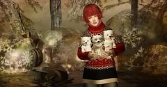 Christmas Puppies (tamarind.silverfall) Tags: dura pixicat theskinnery saltpepper oleander fashiowl thelittlebranch tannenbaumchristmasmarket tamarindsilverfall