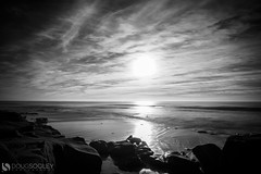 Mono Monday 12/05/2015 (dougsooley) Tags: monochrome mono monomonday blackwhite bw blackandwhite seashore seaside seascape sea california cali monterey montereycalifornia dougsooley canon canon1dx canonlenses canonlens landscapes landscape