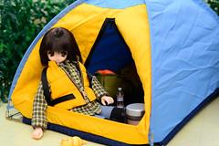 Koron in the tent (Pureneemomo) Tags: koron excute pureneemo azone doll