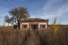 Zamora. 2016. (Jose_Prez) Tags: zamora color casa rural otoo camino abandono autumn puntodefuga arbol rbol tree